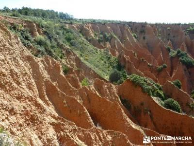 Carcavas de Alpedrete de la Sierra y Meandros del Lozoya;senderismo guadalajara;rutas senderismo